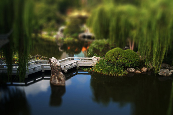 Tilt Shift Photographs