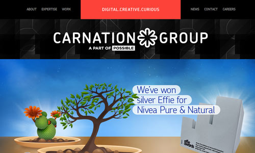 29 Beautiful Examples of Website Development Company | Browse Ideas